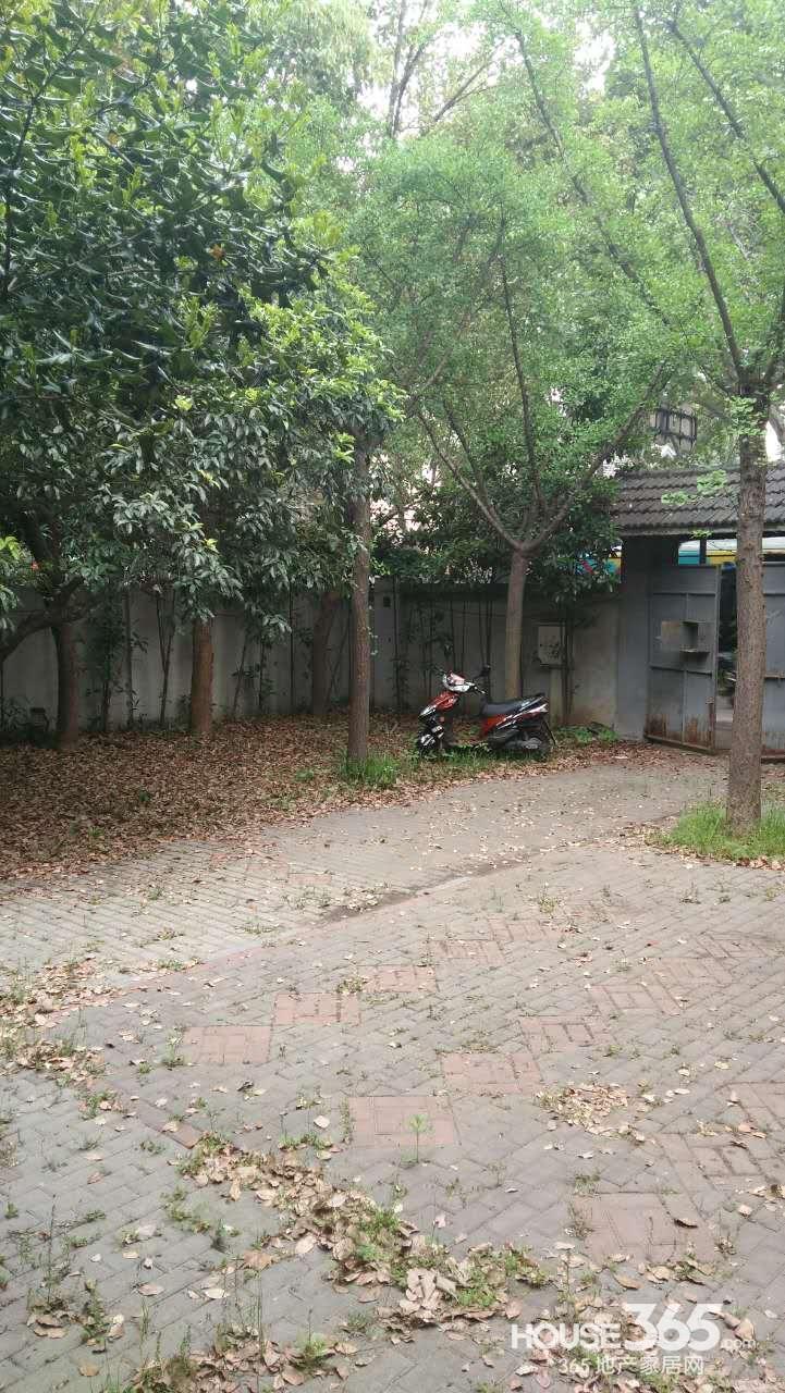 【【Q别墅】北京永久民国别墅主城区西路私人什么放房网门口盆栽图片
