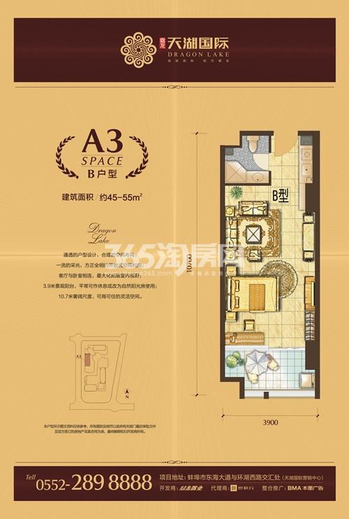 天湖国际 A3 一室一厅45-55㎡