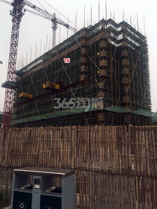 2015年6月阳光郡项目实景--1号楼