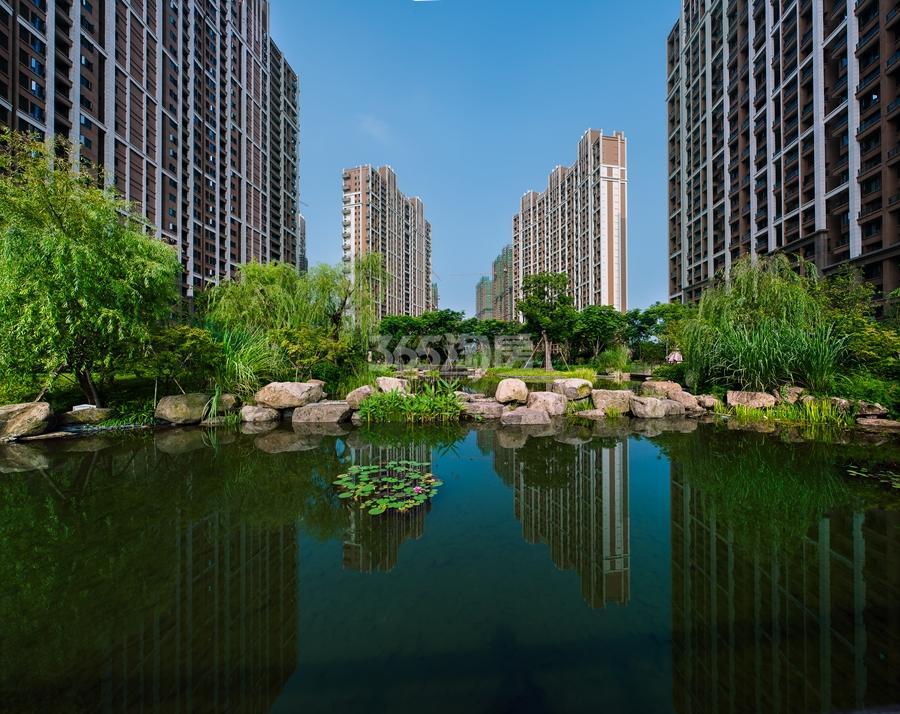 越秀星汇城景观绿化实景图 2015年10月摄
