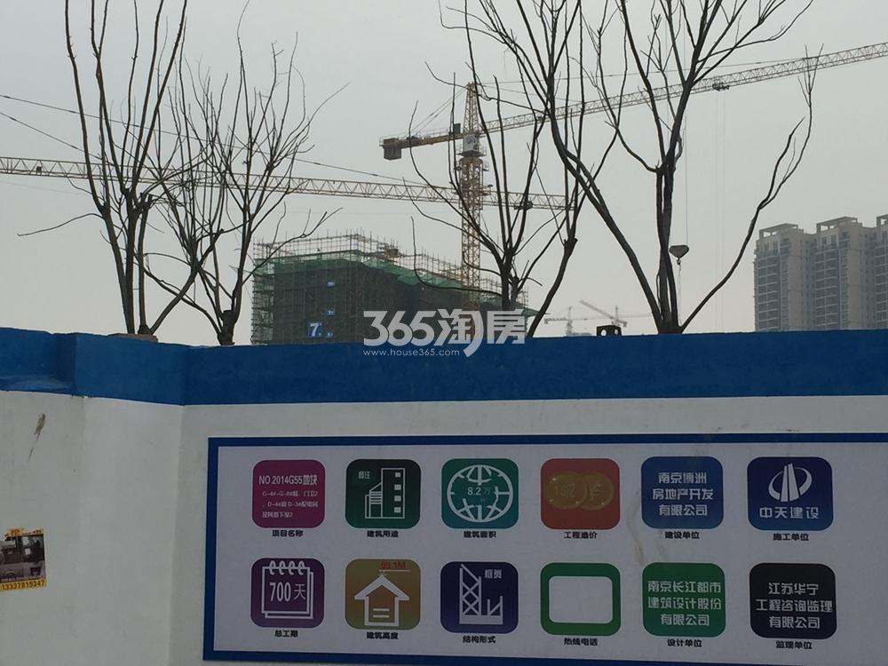 禹洲吉庆里施工实景图(1.9)
