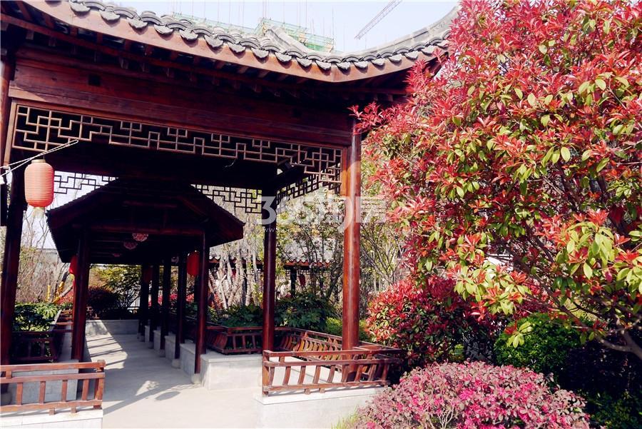 荣盛西湖观邸实景图
