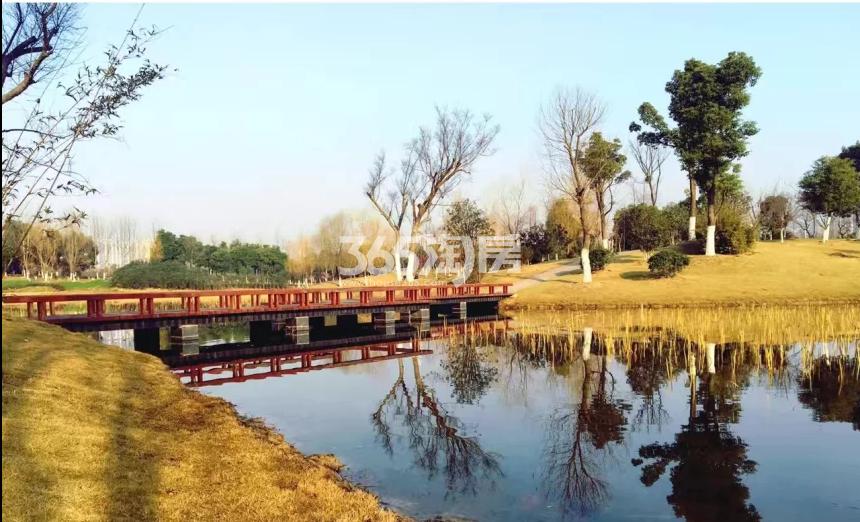 信达公园里周边配套湖实景图(9.4)