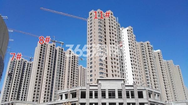 荣盛花语城云锦一期A7、8、11#工程实景图(9.14)